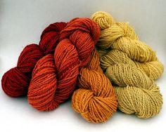 Naturally dyed wool yarn L to R-Eucalyptus(2), onion, virginia creeper, onion(2)
