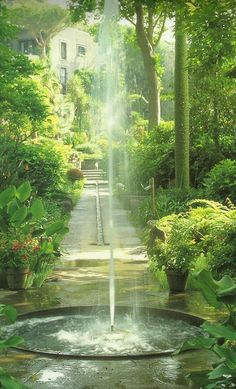 Beautiful water feature /  fountain in a green lush garden