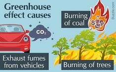 How you can help slow down the greenhouse effect || Image Source: https://sites.google.com/site/geoffreymorell01/_/rsrc/1512718681534/blogs/how-you-can-help-slow-down-the-green-house-effect/1200-322786-462267209-596045804-161721967.jpg?height=250&width=400