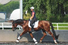 Germany's Uta Graf on the Importance of Riding in a Stretching Position