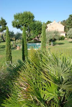 livre cr er un jardin de style m diterran en sans arrosage jardin pinterest arrosage. Black Bedroom Furniture Sets. Home Design Ideas