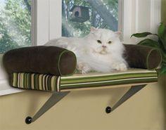 Lazy Pet Kitty Window Perch, Chaise, Cat Kitten Bed in Pet Supplies, Cat Supplies, Cat Lover Products Cat Window Perch, Cat Perch, Window Bed, Window Sill, Kitten Beds, Cat Room, Pet Furniture, Cat Supplies, Pet Beds