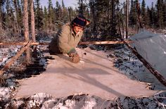 Cree woman scrapes fur off a stretched caribou hide in Quebec, Canada. #Tanning #Leather
