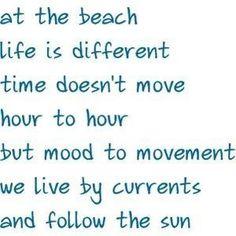 Life at the beach!