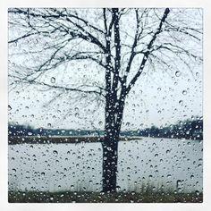 #InstagramELE | Esta #vez nos ha tocado dar el paseo en la lluvia. Todo sea por moverse algo. Por lo menos no hace mucho frío.