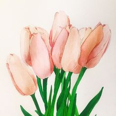 Daily drawing flowers  Day10 . .  #drawing #flowerdrawing #illustration #daily #dailyart #dailydrawing #drawaday #printpattern #100dayproject #watercolor #painting #doodle #drawingchallenge #art #flower #드로잉 #그림 #그림스타그램 #아트 #일러스트 #꽃 #튤립 #꽃그림 #드로잉찰랜지 #데일리그림 #데일리 #수채화 #식물