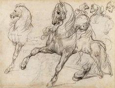 Théodore Géricault - Estudio de caballos