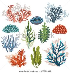 Set Of Cartoon Underwater Plants And Creatures Vector - Ilustracao De Set Of Cartoon Underwater Plants And Creatures Vector Isolated Corals And Algaes Arte Vetorial Clipart E Vetores Stock Image Arte Coral, Coral Art, Underwater Plants, Underwater Painting, Underwater Cartoon, Underwater Bedroom, Underwater Kiss, Titanic Underwater, Underwater Sculpture