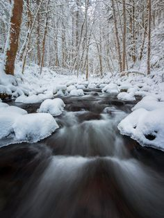 Website | Workshops | Facebook | G+ ------ Icy Gorton, Columbia River Gorge National Scenic Area, Oregon, USA. Nikon D800, 16mm, 1sec @ f/16, ISO 100, polarizer.  Icy Gorton Creek flows gracefully after over a foot of fresh snowfall.