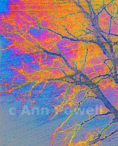 abstract tree fine art photography orange yellow by astreetdesign, $24.00
