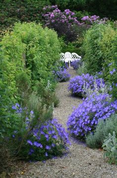 Gravel makes an impact as a garden path without breaking the bank.