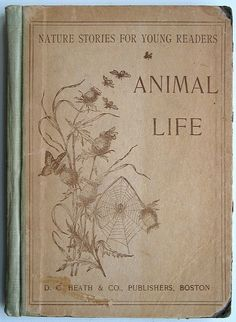 Nature Stories For Young Readers: Animal Life. 1894. photo by cori kindred