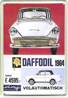 daffodil.jpg picture by eendracht12