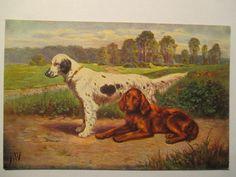 alte Ansichtskarte  Jagd, Jagen  um 1910, Jagdhund , Hund, Dog , Vorsteher