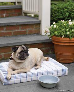 Dog Crafts    Simple Pet Pillow