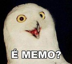 zoeira_é memo