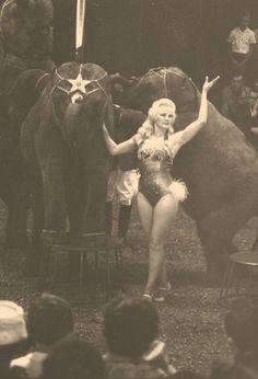 Circus girl with elephants