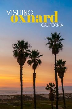 A Perfect Day in Oxnard CA - what to do, eat, and where to stay Oxnard California, Ventura California, Visit California, California Travel, Ventura County, Channel Islands California, Channel Islands National Park, Places To Travel, Places To Visit