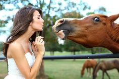 Bride & horse pic...shelooks grossed out by the horse and also she kinda looks like a horse