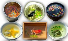 Artist creates stunning 3D paintings of fish using layers of paint and resin