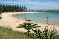 Emily Bay, Norfolk Island, in the South Pacific. Lovely safe swimming bay.