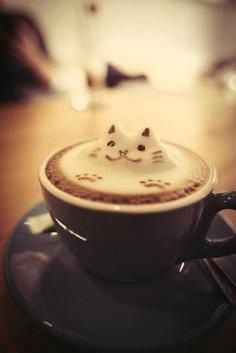 Coffee kitty. I sincerely hope this is real, and I get a latte just like this one day.