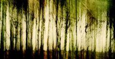 """Saatchi Art Artist Frank Uhlig; Photography, """"Batonga#"""" #art © Frank Uhlig"""
