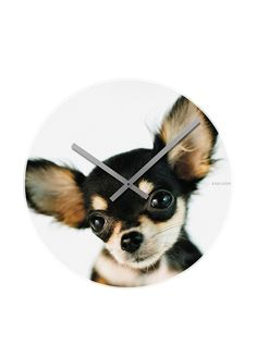 Way too cute for words! Karlsson Dog Face Wall Clock $20 at MYHABIT, I'll take one!