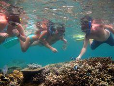 Plongée à L'Etang-Salé, Destination Sud Réunion