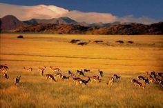 Namib Desert of Angola