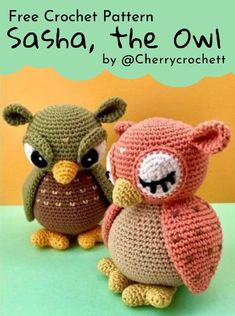 Crochet Birds, Free Crochet, Crochet Animals, Crochet Patterns Amigurumi, Crochet Dolls, Slip Stitch, Stitch Markers, Big Eyes, Single Crochet