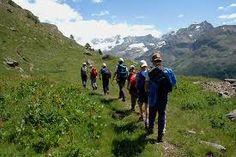 #italian #alps #aostavalley #mountains #travel #holiday #nationalparkgranparadiso #granparadiso #nationalpark