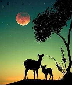 How lovely are Abdullah Evindar mixed media collages! In this series the artist combined silhouettes with nature and landscapes. Working in both analog and… Hirsch Silhouette, Silhouette Painting, Silhouette Photo, Silhouette Artist, Natur Wallpaper, Moon Photography, Pastel Art, Moon Art, Nature Pictures