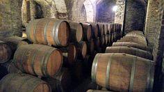 Santa Carolina winery, one of Chile's oldest vineyards #TasteChile