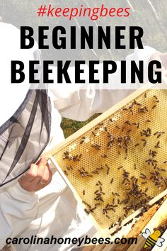 Beekeeping is a wonderful hobby that can lead to a lot of enjoyment. Get started with bees by learning everything you can about having a hive of your own. #carolinahoneybees #beekeepingbeginners #keepingbees