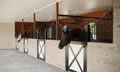 Not my color walls but love the stall back wall and space Barn Stalls, Horse Stalls, Dream Stables, Dream Barn, Luxury Horse Barns, Equestrian Stables, Horse Barn Designs, Horse Barn Plans, Horse Ranch