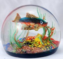 murano aquarium - Google Search