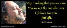 Stop thinking that you are alive.                                                              You are not the one who lives. Life lives. Not you.                                                                                                                                                                                             Just Life. ~ Shri Prashant #ShriPrashant #Advait #life #thought #thinking Read at:- prashantadvait.com Watch at:- www.youtube.com/c/ShriPrashant Website…