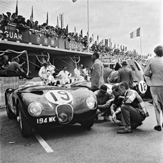 Intensely debating on whether the car is parked correctly! Sports Car Racing, Auto Racing, Sport Cars, Race Cars, Jaguar Type, Jaguar Xk, Vintage Auto, Vintage Cars, Classic Sports Cars