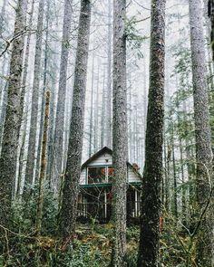 Alternate living here in Oregon. by ioegreer instagramers I like