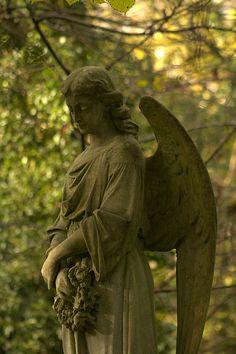Angel at Highgate Cemetery, London Highgate Cemetery, Cemetery Statues, Cemetery Headstones, Old Cemeteries, Cemetery Art, Graveyards, Seraph Angel, Sacred Garden, Cemetery Angels