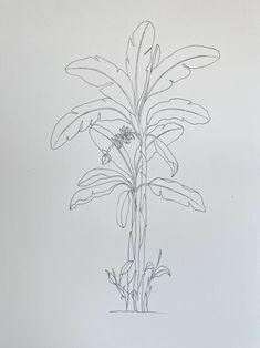Jungle Drawing, Nature Drawing, Plant Drawing, Painting & Drawing, Palm Tree Drawing, Motif Tropical, Native Tattoos, Banana Flower, Palm Tattoos