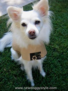 DIY Pet Coat Pattern - here's a detailed sewing pattern and tutorial showing how to make a jacket for a dog.