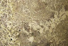 Star Beach. Læs Mere. Læs Mere. Gabrelle Blnco Granite Countertops ...
