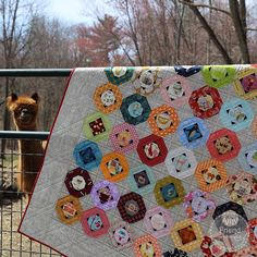 I Spy Quilt, scrappy stash buster