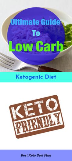 DIY Homemade Keto Diet selected just for you Keto Diet Guide, Best Keto Diet, Keto Diet Plan, Ketosis Diet, Ketogenic Diet, Diet Recipes, How To Find Out, Low Carb, Just For You
