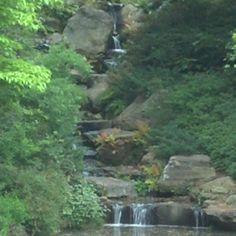 Garven Woodland Gardens in Hot Springs AR