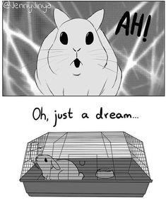 Heartbreaking Comic About An Abandoned Pet Rabbit By Artist Jenny Jinya - MakesUrDay Sad Comics, Comics Story, Short Comics, Cute Comics, Funny Comics, Black Cat Comics, House Rabbit Society, Joy And Sadness, Survival Instinct