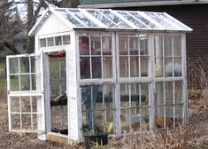 I thought I'd share with you my new greenhouse made with old windows. It's not quite done yet.