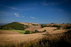 Umbrian countryside near #Todi , August2012